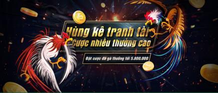 Đặt cược gà đá thưởng 5.800.000 VNĐ tại dubai casino