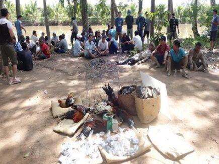 Bắt giữ 36 người tụ tập đá gà trong vườn sao ở TP Long Xuyên